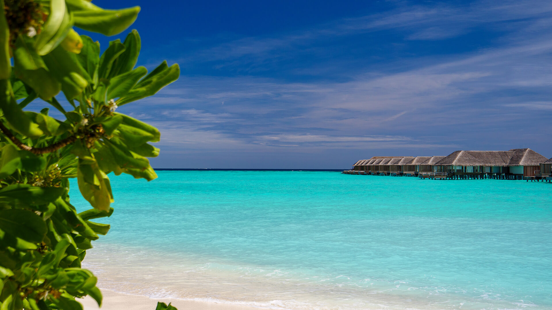 Top 7  Reasons a Maldives is the ultimate stress-buster