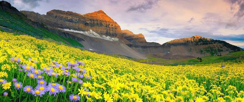 Nanda Devi and Valley of Flowers National Park